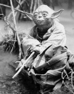 Yoda the Mentor as a Great Leader from Star Wars
